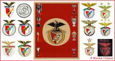 A Minha Chama: Benficar Parte 5