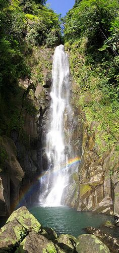 Dominica Waterfall. Island of Dominica.