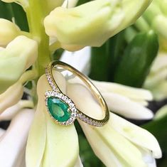 A pretty pear for the smarty-pants grad to wear! Amelia Island, Meira T, Smarty Pants, Stacking Rings, Custom Jewelry, Jewelry Stores, Birthstones, Pear, Emerald