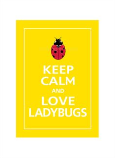 Keep Calm and LOVE LADYBUGS Print 5x7 Sunflower by PosterPop, $7.95