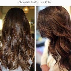 Chocolate Truffle Hair Colour Autumn Winter 2014 Colour Inspiration
