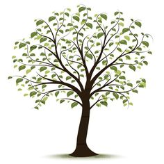 tree clip art free | CLIPART TREE | Royalty free vector design