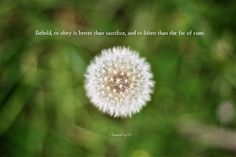 [1 Samuel 15:22 ESV] Behold, to obey is better than sacrifice, and to listen than the fat of rams.