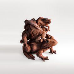 Grenouille en chocolat (Patrick Roger)