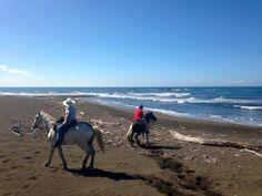 Horseback riding on the beach? How can you go wrong? #Nosara #CostaRica #TierraMagnifica