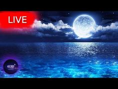 🔴 Relaxing Music, Healing Music, Meditation Music, Spa Music, Zen Music, Sleep, Yoga, Study MusicWelcome everyone! I hope your are having an amazing Day/Night! Get back loosen up your body take a deep breath and enjoy my music with the beautiful imagery from all around the world!   All music composed by Astro Universe - Relaxing Music  I compose music that can be labeled as for example: sleep music  calm music  yoga music  study music  peaceful music  beautiful music and relaxing music… Yoga Music, Meditation Music, My Music, Take A Deep Breath, Music Composers, Music Heals, Relaxing Music, I Hope You, Stress Relief