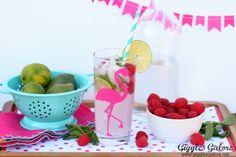 Raspberry Lemonade Mojito Drink