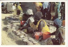 Fish market in Mali Postcards, Fish, World, Painting, Art, Art Background, Painting Art, Paintings, Kunst