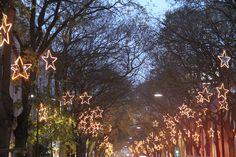 Iluminação de Natal, Campo de Ourique, dez 2013