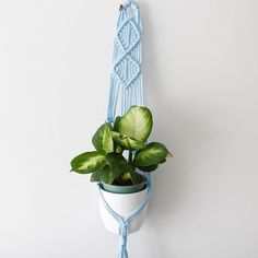 coloured plant hangers, these hangers are water proof and can be hung outside. These hangers will sit flat on your wall. Made with nylon and can add details (go