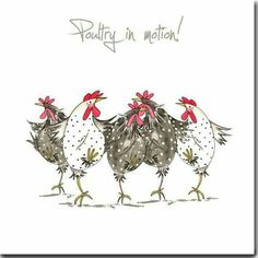 Happy Monday Quotes Discover Chicken Card - Poultry In Motion Greeting Card - Funny Chicken Card Dancing Hens Blank Inside Chicken Card Poultry In Motion Greeting Card Funny Chicken Chicken Humor, Chicken Art, Funny Chicken, Chicken Drawing, Watercolor Artwork, Watercolor Cards, Chickens And Roosters, Ideias Diy, Poultry