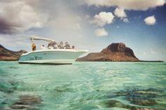 Unser Tipp für Mauritius: schwimmen mit wilden Delfinen & mauritianisches BBQ