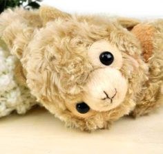 Alpacasso Earmuffs - Caramel Beige Alpacasso Amuse,http://smile.amazon.com/dp/B00GOJC9R8/ref=cm_sw_r_pi_dp_.zCAtb1XXM080MSJ