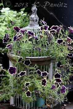floral arrangements, table decorations and centerpiece ideas