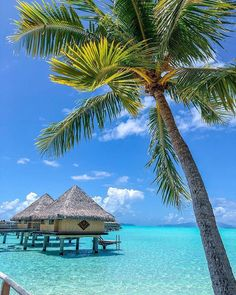 Overwater Bungalows In Bora Bora, French Polynesia - Updated 2020 Beach Images, Beach Pictures, Voyage Bora Bora, Places To Travel, Places To See, Bora Bora French Polynesia, Beachfront Property, Overwater Bungalows, Beach Adventure