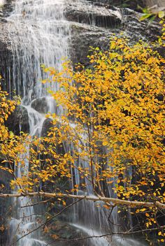 Bridal Vail Falls, Spearfish Canyon, in the #BlackHills of #SouthDakota