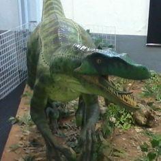 Proteger a fauna marinha tem a cara do Brasil! | Réplica Velociraptor
