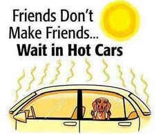 Please keep everyone you love safe in this extreme heat!