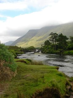 I want to walk along this creek...Ireland. www.dogwoodalliance.org