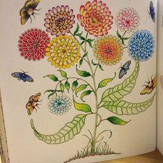 完成です(*´︶`*) #ひみつの花園 #コロリアージュ #おとなのぬりえ #大人の塗り絵 #塗り絵 #ジョハンナバスフォード #secretgarden #adultcoloring #coloringbook #johannabasford #johannabasfordsecretgarden