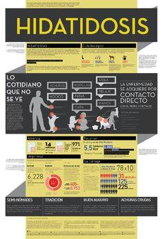 Afiche infográfico realizado con un comitente real: ANLIS (Administración Nacional de Laboratorios e Institutos de Salud). El proyecto fue seleccionado y expuesto ante las autoridades del mismo.    Formato: 100 x 70 cm.