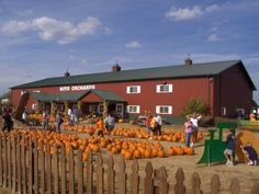 Boyd's Orchard-Versailles, KY