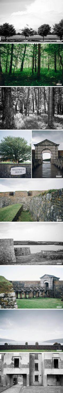 Fort and Ballymole Myrtle, Storytelling, Cork, Wedding Photography, Adventure, Studio, House, Beautiful, Home