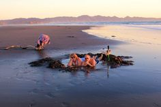 Kawhia (said Car fee a) beach hot spring, North Island West Coast, New Zealand http://www.kawhiaharbour.co.nz/hotpools.html