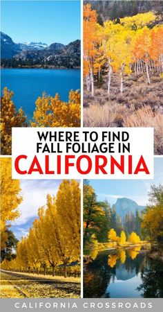Looking for the best fall foliage in California? Here are the 23 best places in California for fall color! Fall destinations in California | Fall leaves in California | Fall foliage California | Fall foliage in Northern California | Fall foliage in Southern California | Eastern Sierra fall foliage | fall in California | places to visit in fall in California | places to go in the fall in California | where to find fall colors in California | California in October | Yosemite in fall California Places To Visit, California Travel Guide, California California, Northern California, Places To Travel, Travel Destinations, Places To Go, Central America, North America