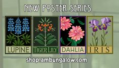 Now through April visit our online store for exclusive discounts on books, back issues, posters and more! We've added new items, including a new series of poster prints as well as a selection of rare & sold out issues. Poster Series, New Poster, Bungalow Homes, 1920s Art, Calla Lily, Poster Prints, Posters, Dahlia, Poppies