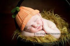 pumpkin baby photography