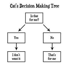 Cat Decision Making Tree.  😻