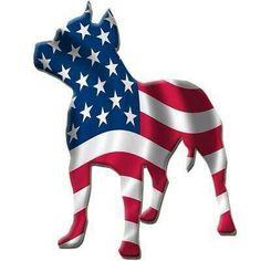 True American dog