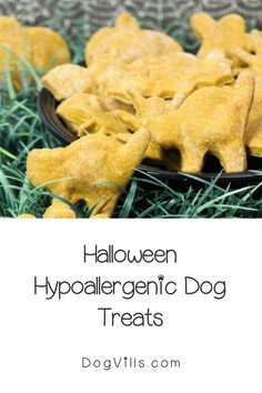 You already have your pup on the best hypoallergenic dog food, but finding great hypoallergenic dog treats can seem a little daunting at times. Halloween Cookie Cutters, Halloween Cookies, Hypoallergenic Dog Treats, Best Dog Food, Dog Food Recipes, Pup, Pumpkin, Times, Baking