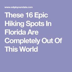 These 16 Epic Hiking Spots In Florida Are Completely Out Of This World