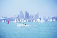 Sailboats Downtown