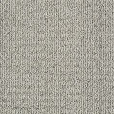 STAINMASTER TruSoft Shale Berber Carpet
