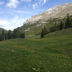 Plätzwiese Mount Rainier, Mountains, Nature, Travel, Naturaleza, Viajes, Destinations, Traveling, Trips