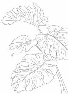 Line Art Monste… – #Art #Line #Monste #monstera Plant Drawing, Painting & Drawing, Tropical Art, Diy Canvas Art, Art Drawings Sketches, Illustration, Watercolor Art, Art Prints, Monstera Leaves