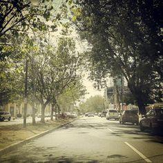 'Driving on a dream' #street #morning #Saturday #SantoDomingo - @esglen- #webstagram