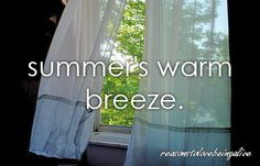 summer's warm breeze