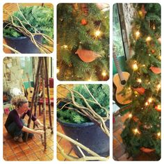 Our lovely Solstice Tree, made entirely from fallen debris found on the forest floor. Click for some thoughts on birthing new holiday traditions. www.toko-pa.com