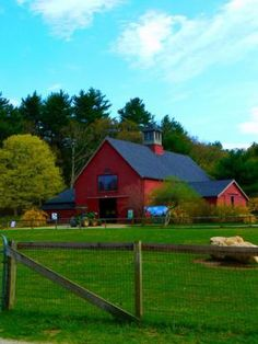 Drumlin Farm, Lincoln MA    beautiful area, I'd love to live their!