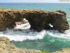 Barbados - hiking or walking along the northern coastline is a fantastic way to enjoy the rugged beauty of this part of the island.