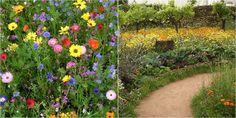 Cómo conseguir un climax floral en el jardín y el huerto: ¡listado de flores y consejos!