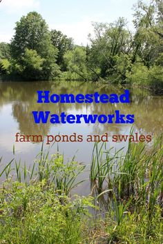Creating an off-grid water system by adding homestead waterworks systems such as farm ponds and swales.