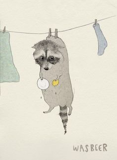 "#learningdutch Wasbeer - Racoon, literally translated to ""wash bear"". Courtesy of Laura Frame Illustration."