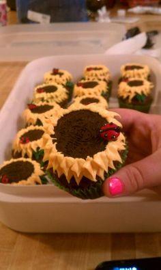 Sunflower Ladybug Cupcakes