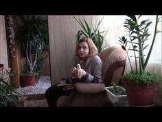 Банановая кожура, удобрение для комнатных растений
