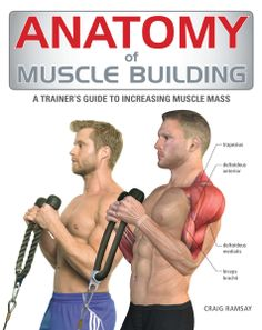 Anatomy of Muscle Building is organized by body area to reflect the common progression of a well-planned workout. The author also supplies easy-to-follow workout plans suited to all levels of fitness and experience.